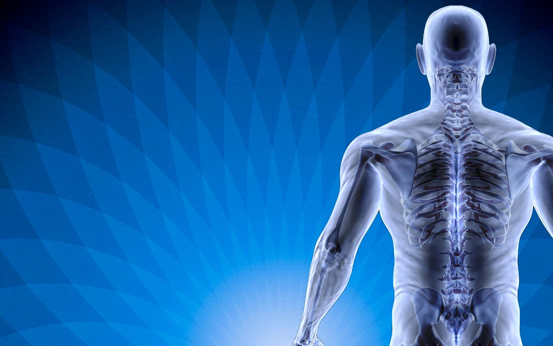 Chiropractors, Physiotherapists and Ostepaths